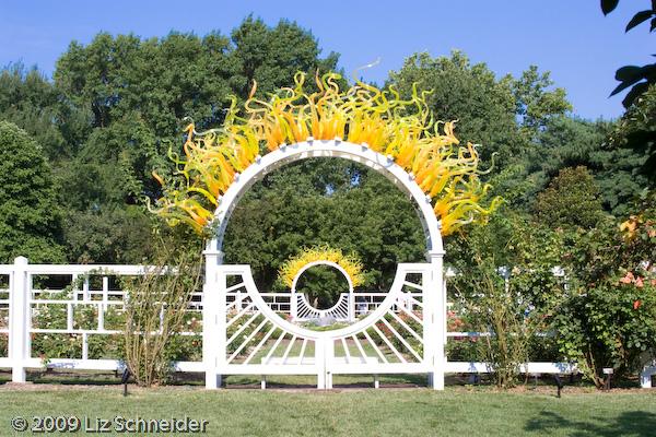 sun-rosegarden-010